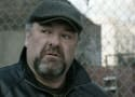 Top 11 James Gandolfini Movie Roles: A Legend Lost