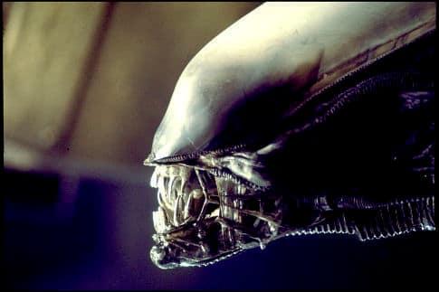 The Alien from Alien