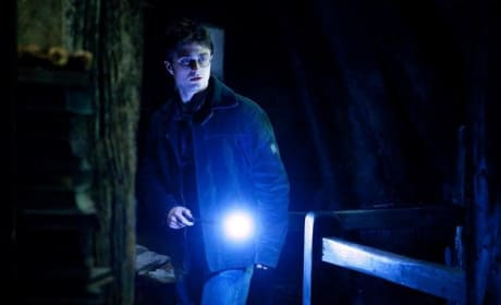 Three New Harry Potter and the Deathly Hallows Images Surface!