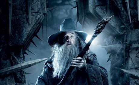 The Hobbit The Desolation of Smaug Character Banners: Gandalf, Bilbo & More!