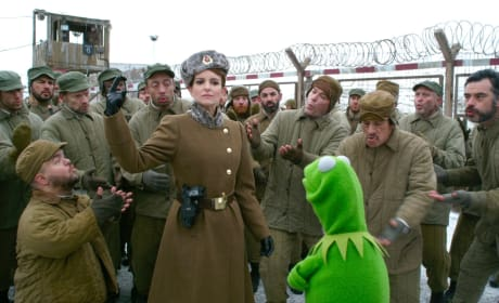 Muppets Most Wanted Photos: Tina Fey Restores Order!