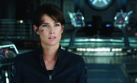 The Avengers Star Cobie Smulders