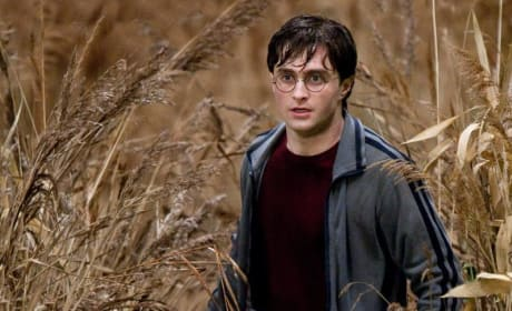 Two New Harry Potter and the Deathly Hallows Pictures Released