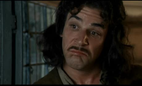 The Princess Bride Stars Mandy Patinkin