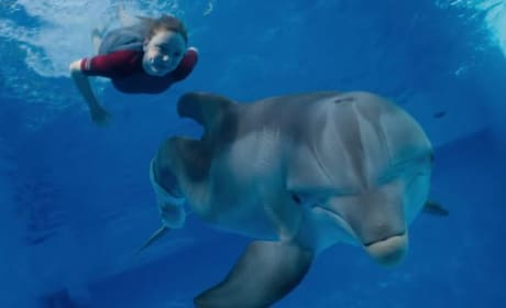 Dolphin Tale 2 Photo Still