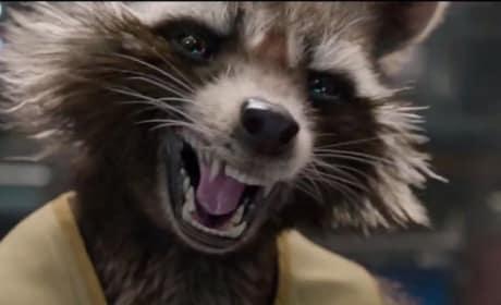 Rocket Raccoon Photo