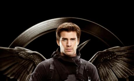 Mockingjay Part 1 Gale Character Poster