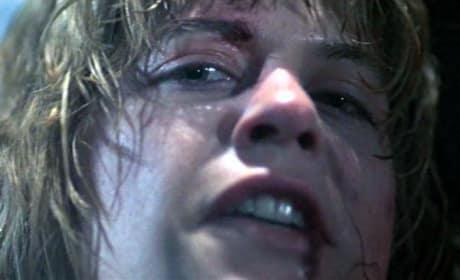 The Terminator Linda Hamilton