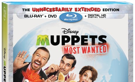 Muppets Most Wanted DVD Review: They're Doing a Sequel!