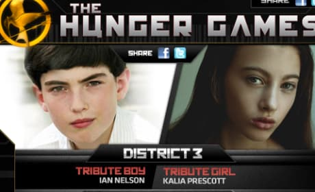 The Hunger Games District 3 Tributes