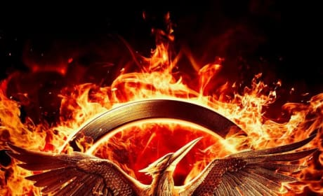 Mockingjay Part 1 Teaser Poster: Bird on Fire