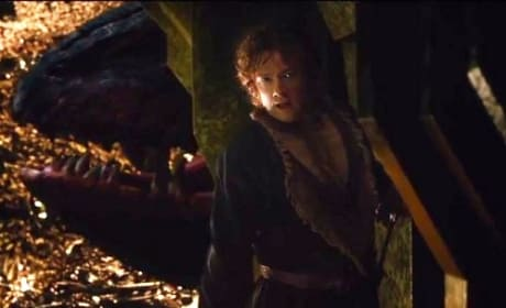 The Hobbit The Desolation of Smaug TV Spot: Meet the Dragon!