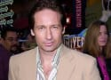 David Duchovny Desires More X-Files