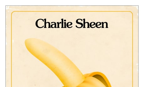 A Glimpse Inside the Mind of Charles Swan III Charlie Sheen Poster