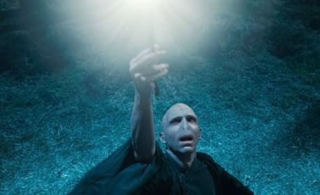 Harry Potter and the Deathly Hallows Sets Franchise Record