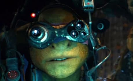 Teenage Mutant Ninja Turtles Raphael Still