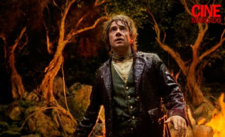 The Hobbit Gets New Stills: See More of Bilbo and Gandalf