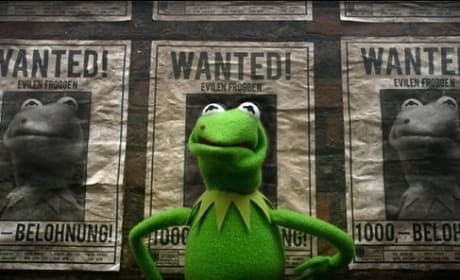 Muppets Most Wanted Kermit