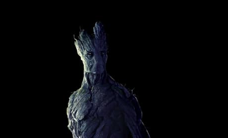 Guardians of the Galaxy Groot Photo