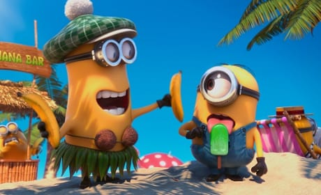 Despicable Me 2 Wins Again: Weekend Box Office Report