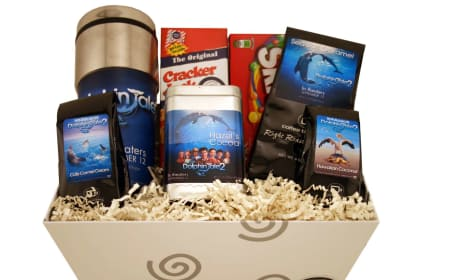 Dolphin Tale 2 Prize Pack