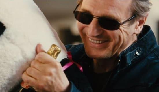 Liam Neeson Taken 3 Photo