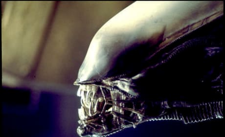 The Alien from Alien