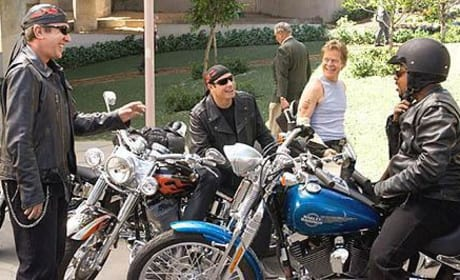 Wild Hogs Picture
