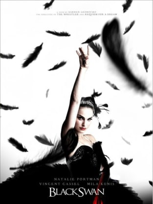 Black Swan Feathers Poster