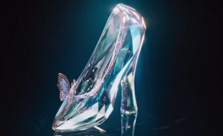 Cinderella Slipper Photo