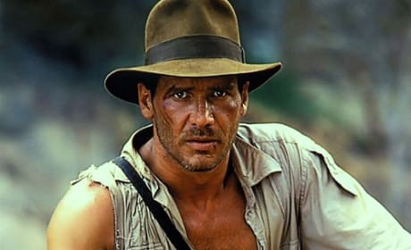 Should Indiana Jones continue without Harrison Ford?