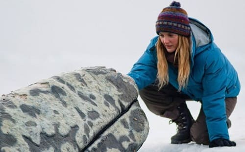 Drew Barrymore Stars in Big Miracle