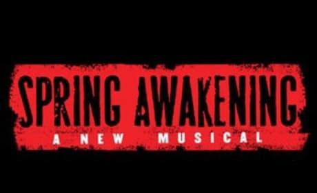 McG in Talks to Direct Spring Awakening Movie