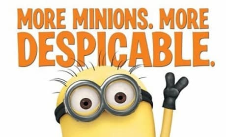 Despicable Me 2 Lets Loose its Poster
