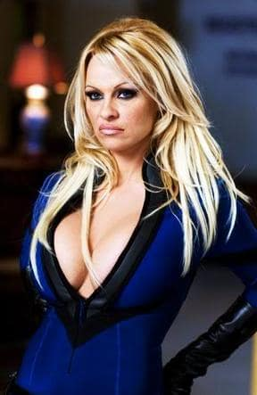 Pamela Anderson is Invisible Girl