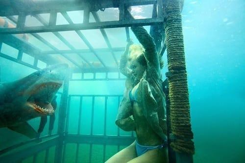 Sara Paxton in Shark Night 3D