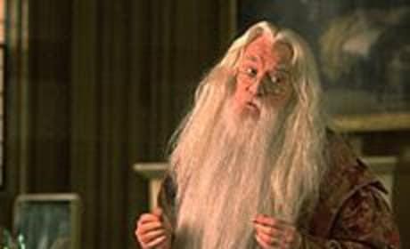 Albus Dumbledore Picture