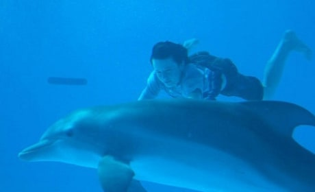 Dolphin Tale 3D Movie Review: Fine Family Film