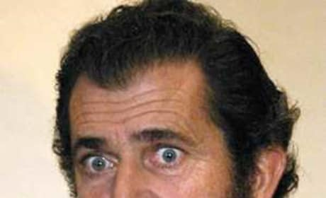 Mel Gibson to Appear in The Hangover 2