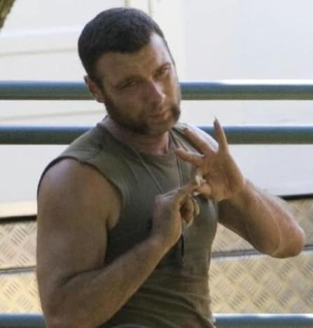 On Wolverine Set