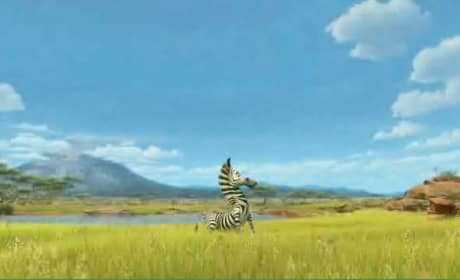 Madagascar: Escape 2 Africa Clip