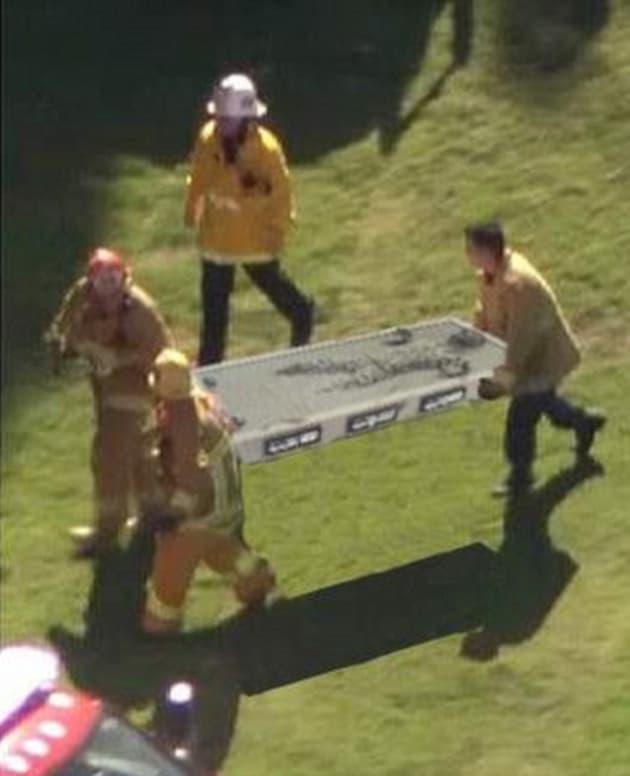 Harrison Ford Plane Crash Carbonite