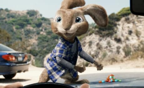 Weekend Box Office: Hop Bounces Way Above Competition in Week 2