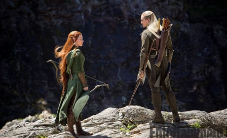 The Hobbit The Desolation of Smaug Photo: Legolas & Tauriel Talk
