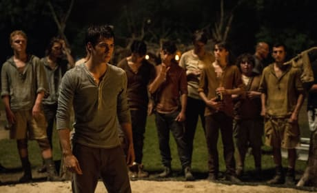 Dylan O'Brien The Maze Runner Photo Still