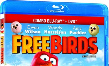 Free Birds DVD Review: Changing History!