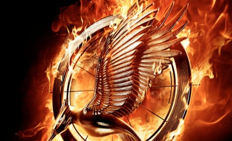 Catching Fire Exclusive Giveaway: Win Katniss Portrait & More!