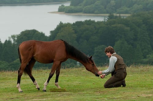 Jeremy Irvine and His Horse in War Horse