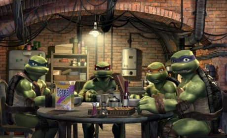 Teenage Mutant Ninja Turtles Reboot Nabs a Director