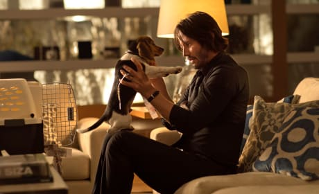 11 Best John Wick Quotes: Yeah, I'm Thinking I'm Back!